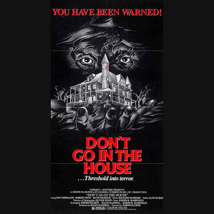 0029 Don't Go In The House (1979*)