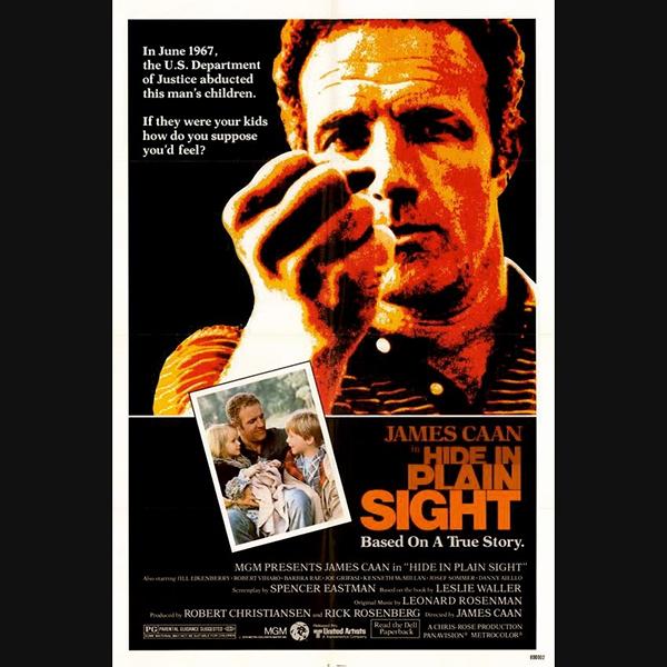 0024 Hide in Plain Sight (1980)